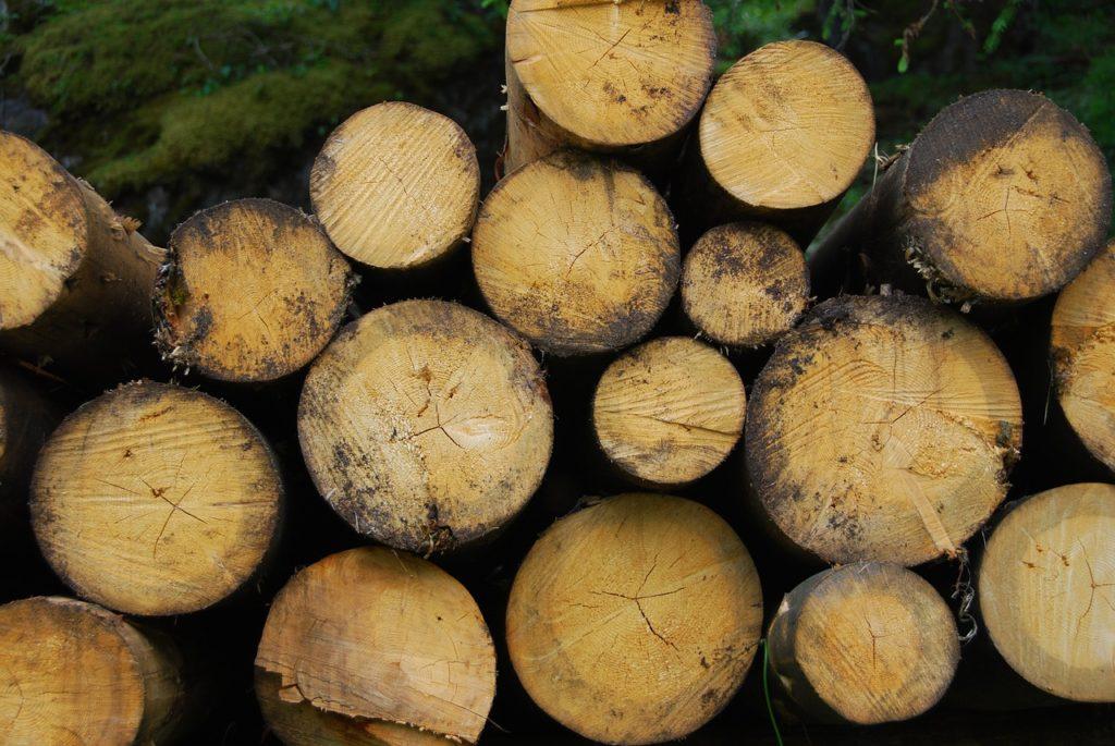 cómo funciona la energía de biomasa