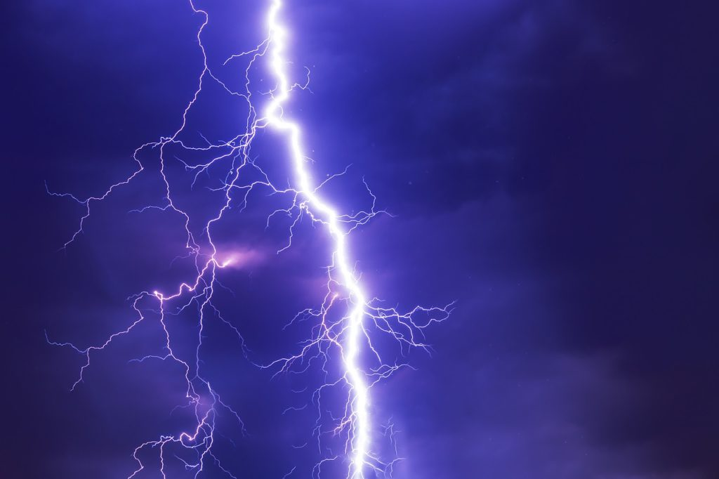 energía eléctrica en la naturaleza