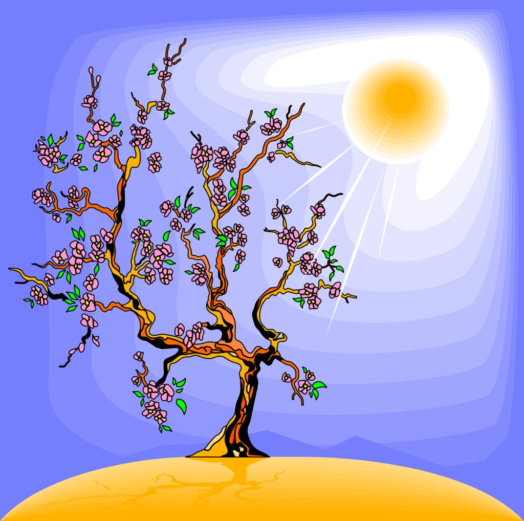 fotosíntesis energía química