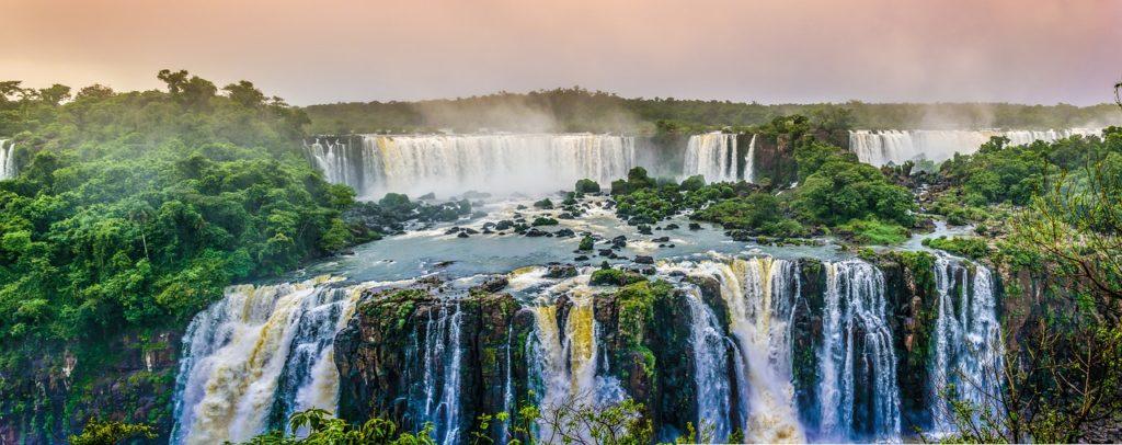 biodiversidad en brasil