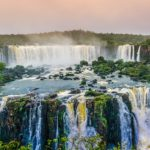 Biodiversidad: ¿Qué es? Importancia, Tipos y Ejemplos🍃🍀