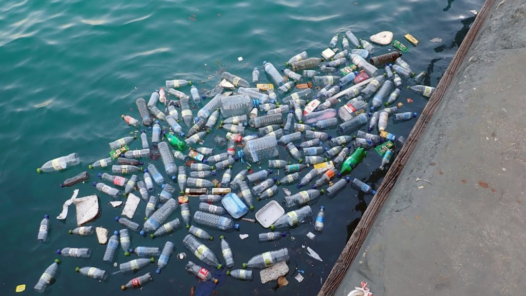 consecuencias contaminación del plástico