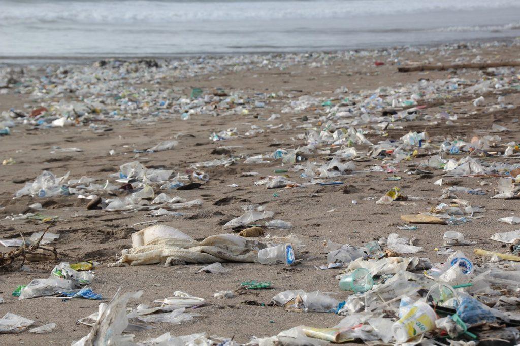 Contaminación por Plástico qué es