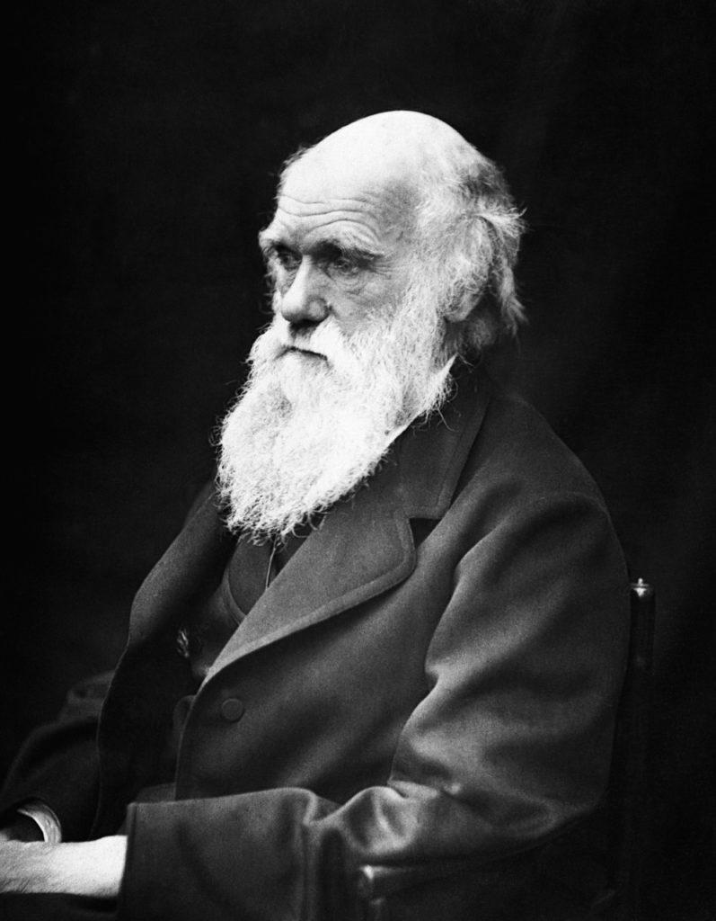 ecología y charles darwin