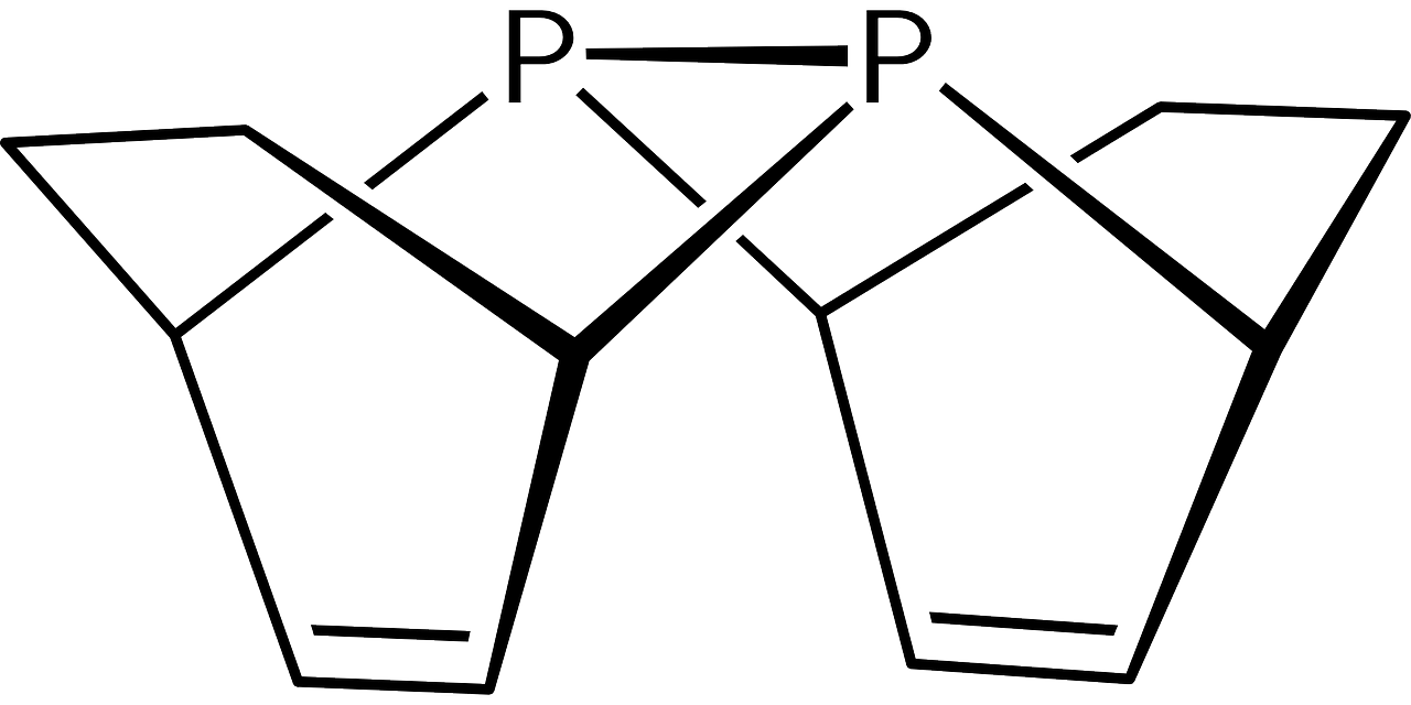 ciclos fósforo