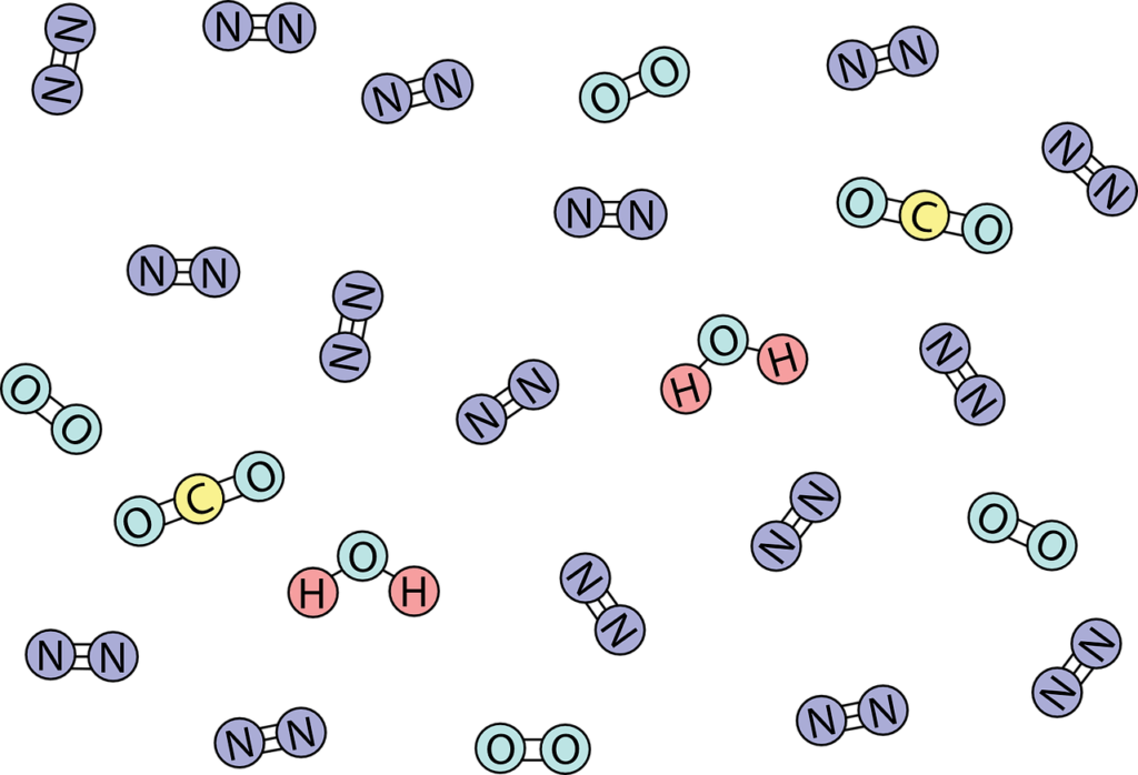 ciclo del nitrógeno qué es
