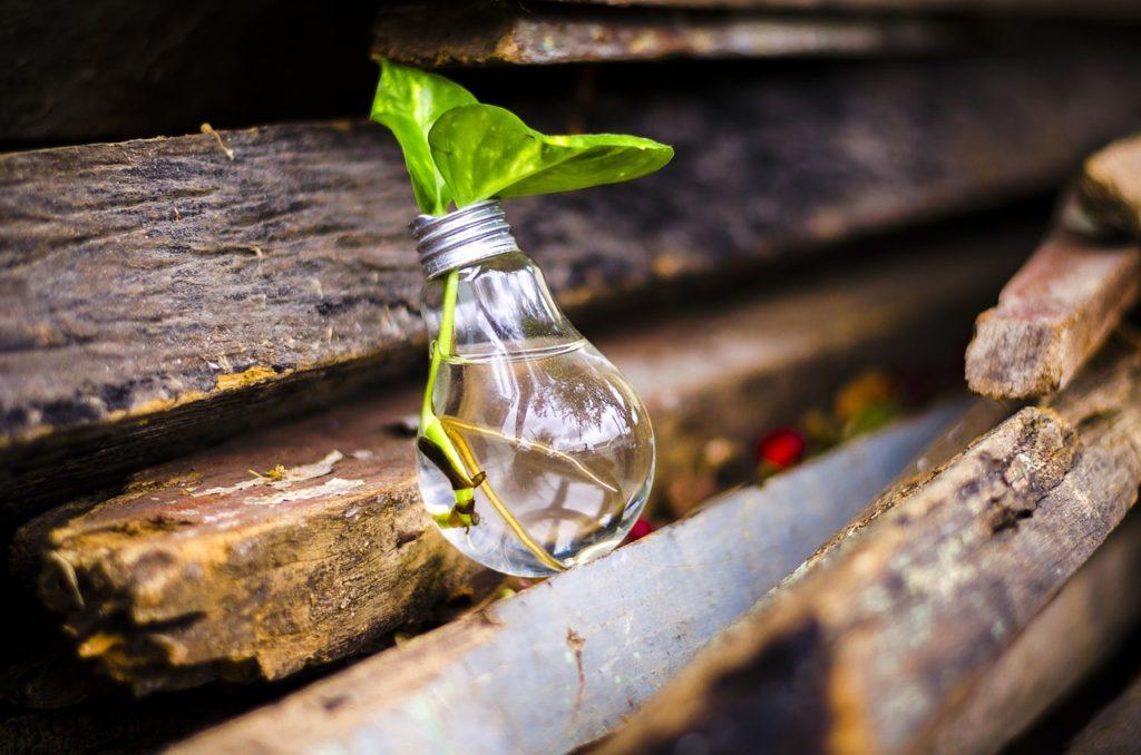 cómo reciclar bombillas