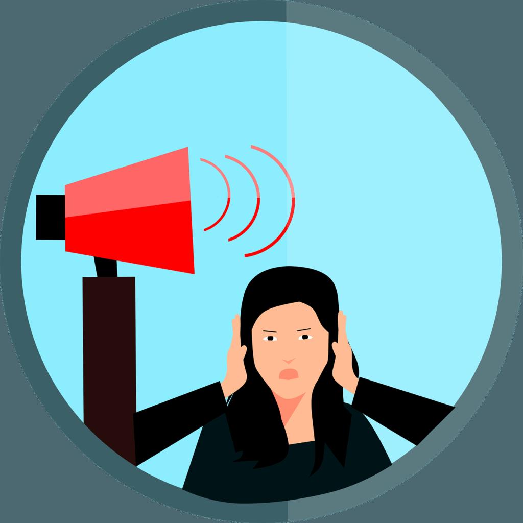 contaminación acústica o ruido