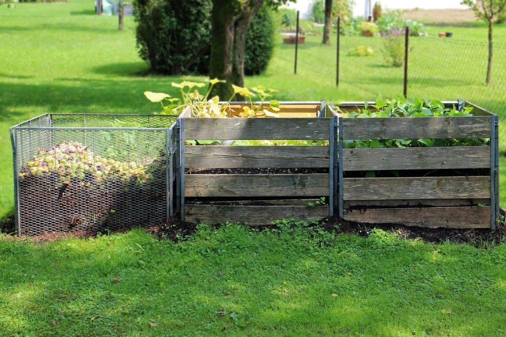 residuos orgánico compost