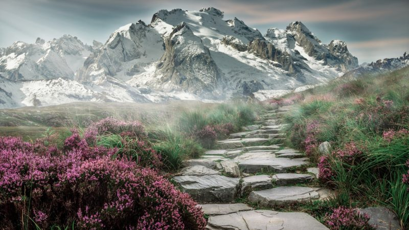 ecosistemas montañosos