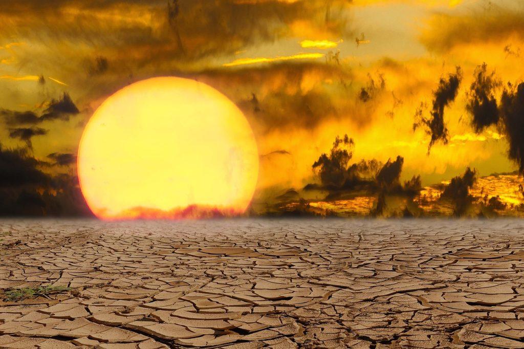 olas de calor consecuencias del cambio climático