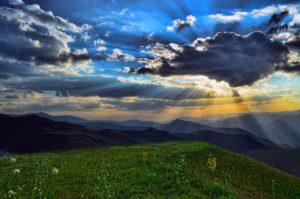 ecosistemas terrestres praderas