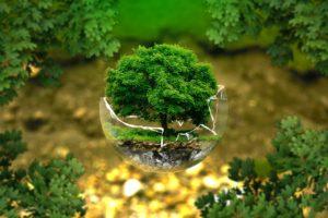 por qué se celebra el día de la tierra