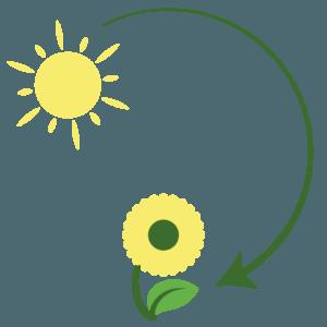 energía que se transforma