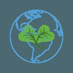 Reino Fungi: [Concepto, Tipos, Ejemplos y Características]🍄