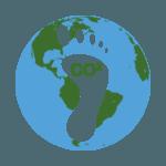 Reino Plantae: [Concepto, Ejemplos y Características]🌱