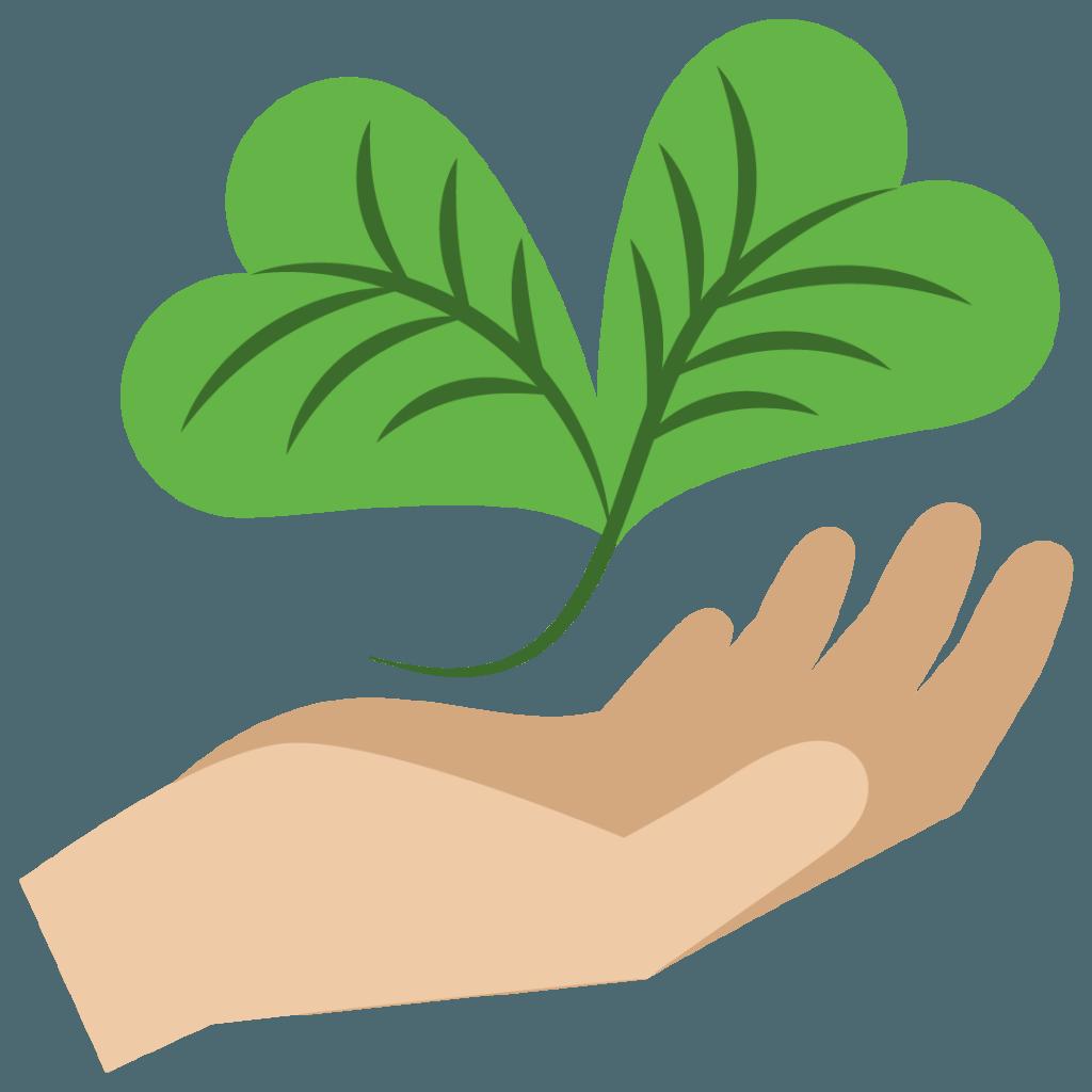 cuidar del medio ambiente