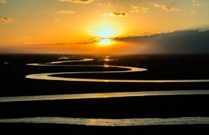 desarrollo de los ecosistemas de agua dulce