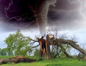 consecuencias de los ciclones