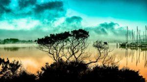 ¿Qué consecuencias puede tener la destrucción de la capa de ozono?
