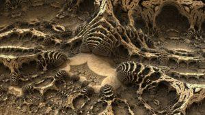 origen e historia del reino animalia