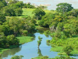 Cómo es el suelo de las llanuras aluviales