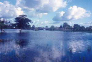 Temperatura en una sabana inundada