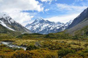 ¿Dónde se encuentran las praderas de montaña?