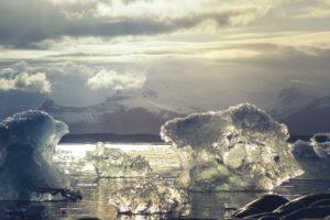 ¿Cuáles ecorregiones terrestres podemos encontrar? Antártica