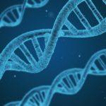Dominios de la Biología: [Características, Tipos y Ejemplos]