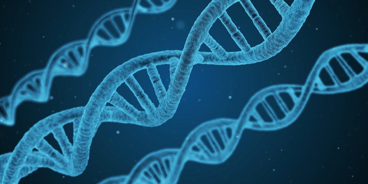 dominios de la biología