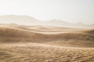 ¿Dónde podemos encontrar regiones con clima desértico?