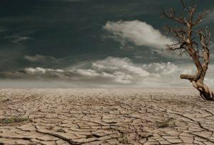 desiertos secos