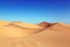 ¿Qué temperaturas suelen tenerlas zonas con clima desértico?