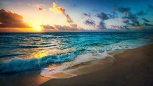 ¿Cómo son los suelos de las islas oceánicas?