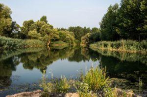¿Qué son las llanuras aluviales?