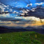 Pradera de montaña: [Características, Fauna, Flora y Temperatura]