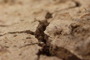 ¿Cómo son los suelos en los Grandes Lagos?