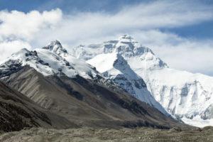 Cómo es la fauna de clima de alta montaña