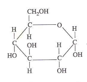 Cómo se clasifican los monosacáridos - Glucosa