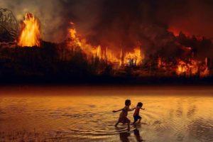 Deforestación y quema