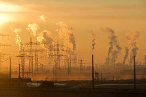 Oso polar en peligro de extinción - Contaminación