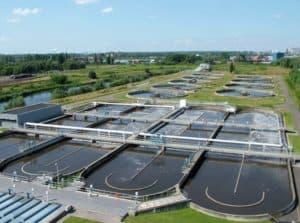 Proyectos para el cuidado del agua - Sistema natural de depuración de las aguas