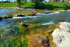 Qué es el equilibrio hídrico