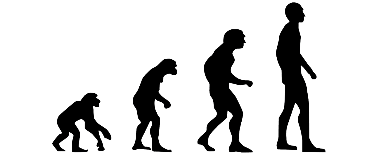 Qué es la teoría sintética de la evolución