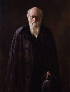 Qué ideas aporta la teoría sintética de la evolución respecto a la teoría de Darwin