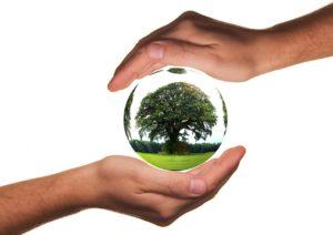 Qué podemos hacer para que nuestros hijos tengan un ambiente sano, con alimentos y recursos suficientes