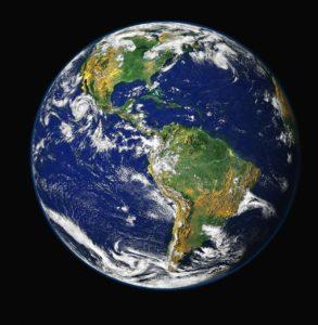 Cómo está organizada la materia viva en nuestro planeta