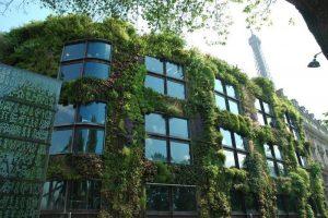 Cómo empezar un jardín vertical - Sustrato