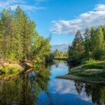 Los 3 Bosques más Grandes del Mundo: [Características e Imágenes]